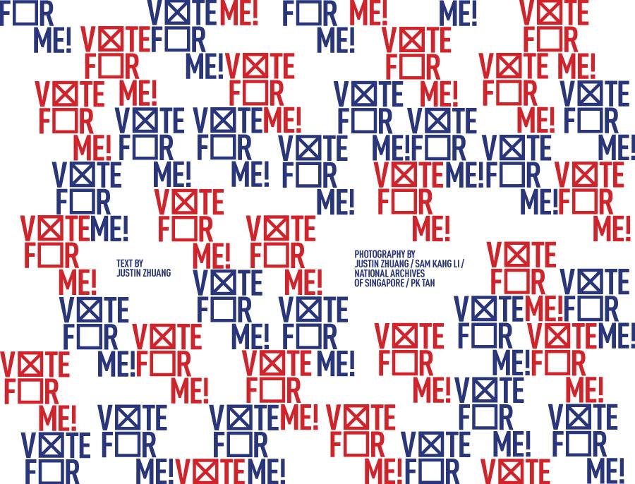 TDSJ-Vote-For-Me